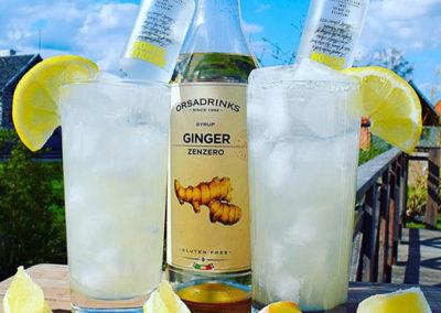 Orsadrinks Ginger Syrup